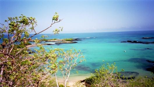 Utsikt över Galapagos ö-värld