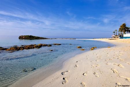 Nissi_Beach_Agia_Napa