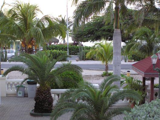 Utsikt från hotellet Amsterdam Manor