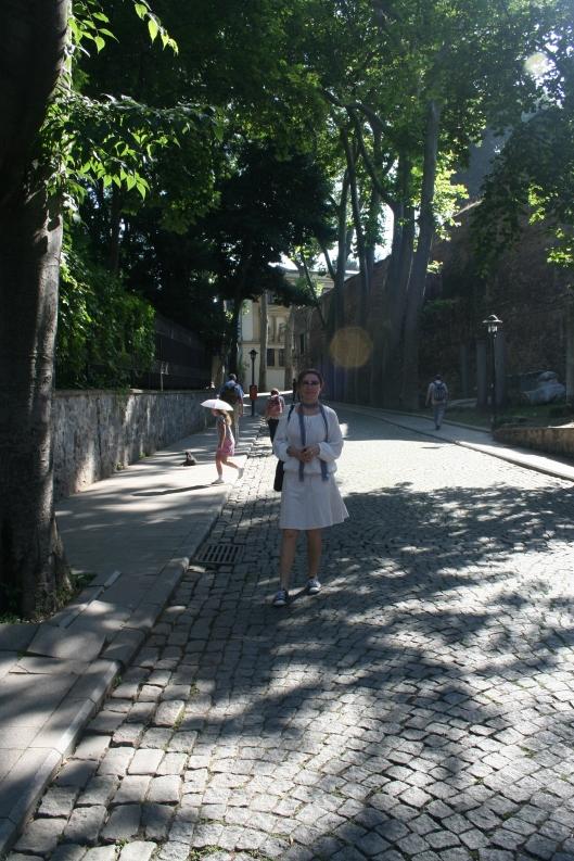 På väg upp till palatset