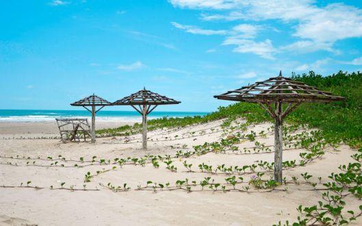 Senegal. Foto från Apollos hemsida