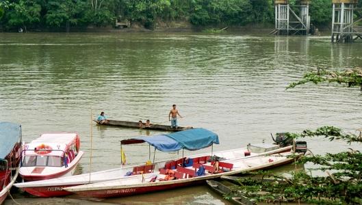 Coca, Amazonas
